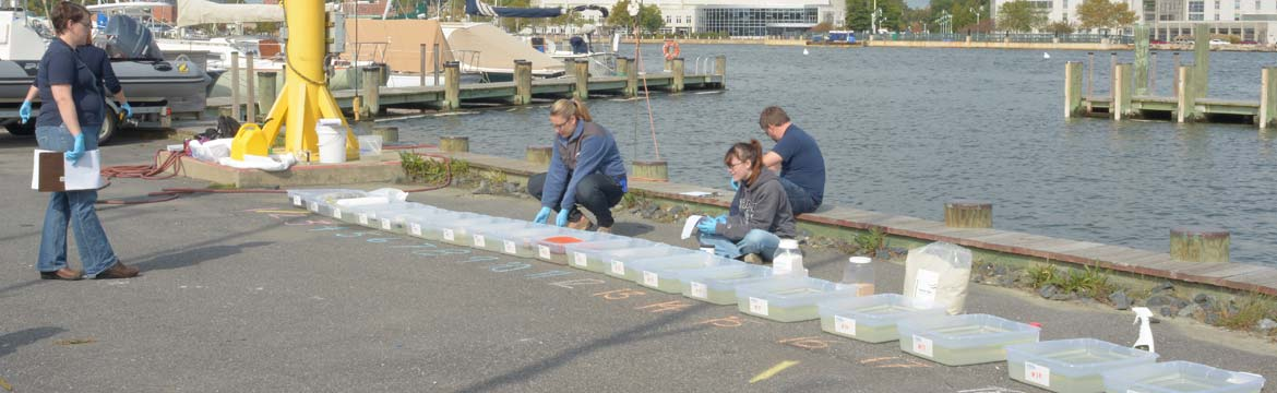 the boat US foundation team tests various products in plastic tubs